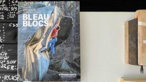 Bleau Blocks - 100 finest boulders of the fontainebleau forest review